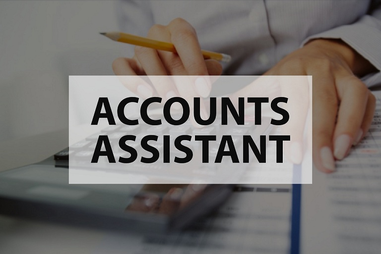 Certified Accounts Assistant